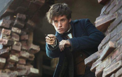 Fantastic Beasts receives fantastic reviews at the box office