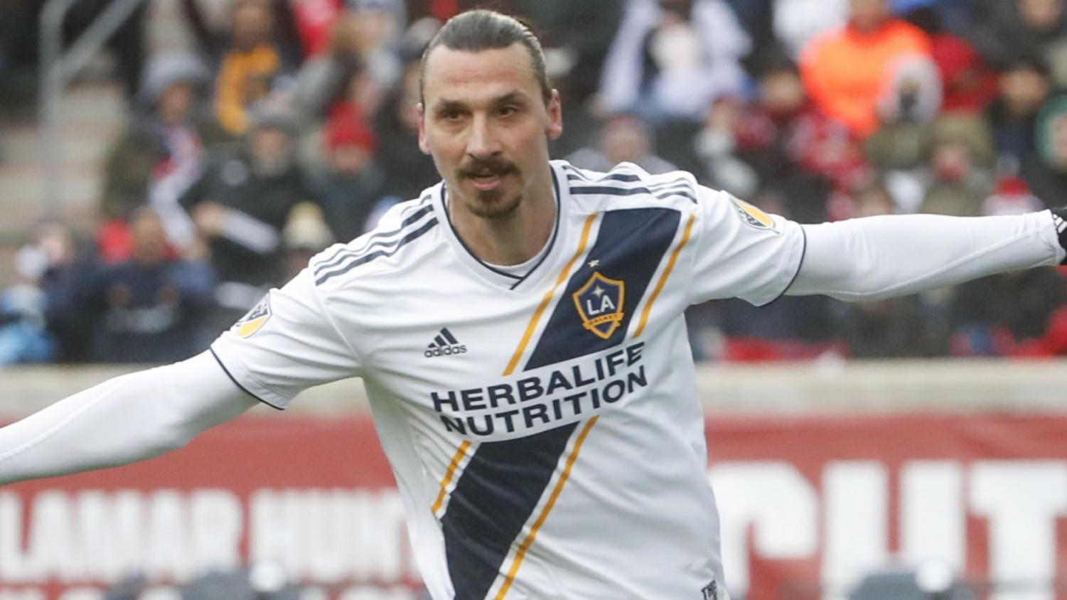 Newly acquired player Zlatan Ibrahimovic celebrates his goal during a LA Galaxy home match.  Ibrahimovic was recently acquired from powerhouse English club Manchester United.