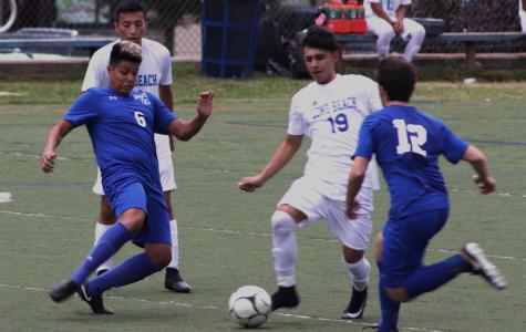 Boys soccer team shoots to continue last season's success