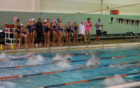 Girls swimming makes waves with a winning record