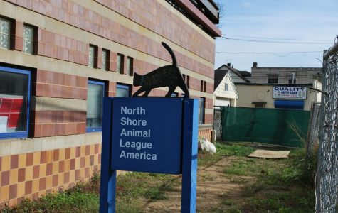North Shore Animal League hosts yearly shelter event