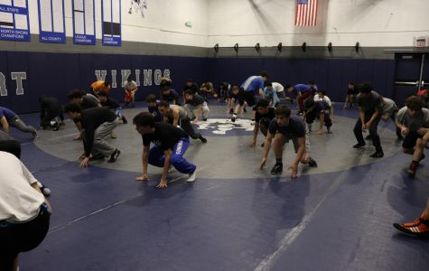 Get to know how to be successful in wrestling from your seniors