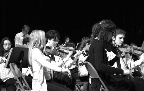 Schreiber musicians take part in Long Island String Festival