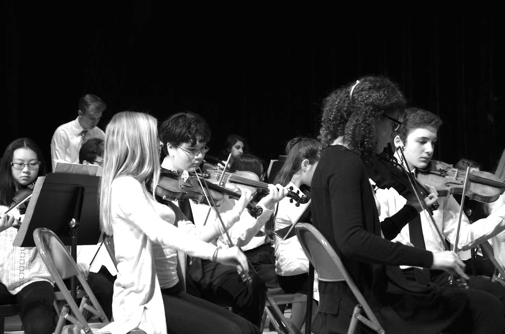 Orchestra students play various instruments as they perform during the Long Island String Festival.