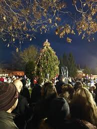 Port Washington residents crowd around the decorated Landmark Christmas tree as they eagerly await its lighting.