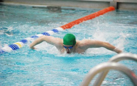 Counties prove to be successful for boys swimming