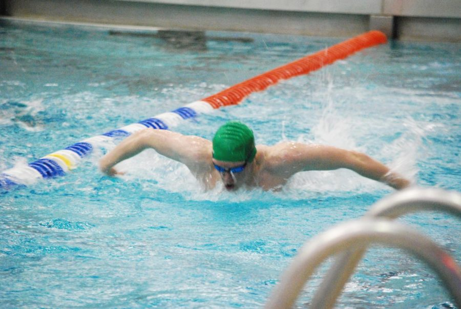 Junior+Peter+Epp+swims+butterfly+while+competing+in+counties+at+Eisenhower++Park+on+Jan.+9.
