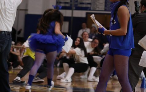 Schreiber grades compete for points in Spirit Week and Pep Rally