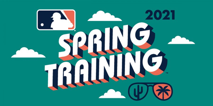 MLB spring training provided a sneak peak for the exciting 2021 baseball season
